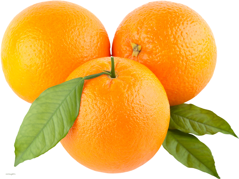 Download Orange PNG Picture.
