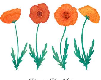 Watch more like Orange Poppy Clip Art.
