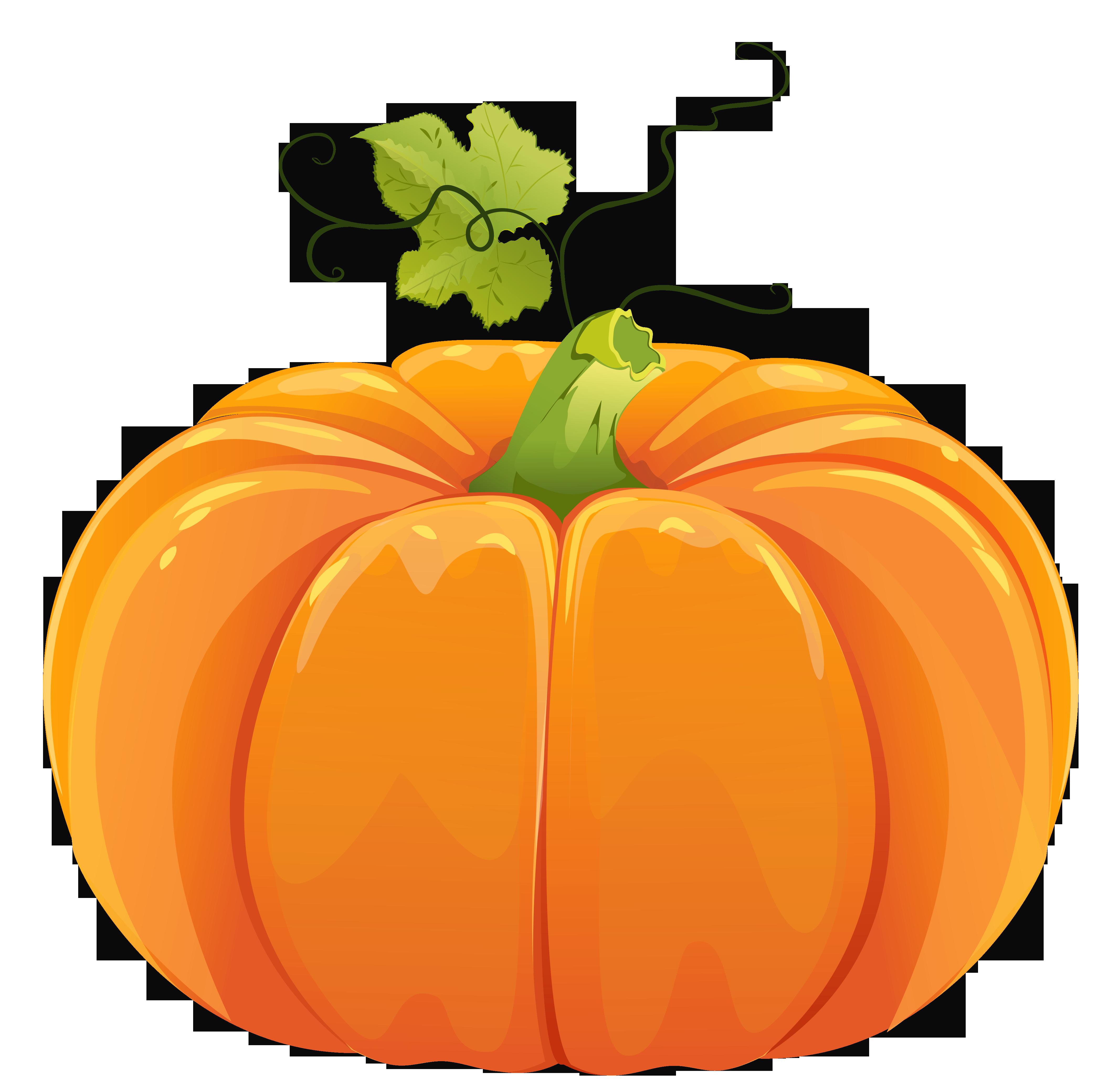 Autumn Pumpkin PNG Clipart.