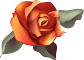 Single Orange Rose Clipart.