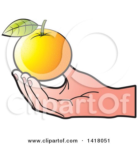 Clipart Outlined Orange Fruit With Leaves.