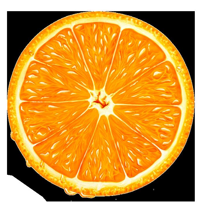 Orange Slice PNG Clipart.