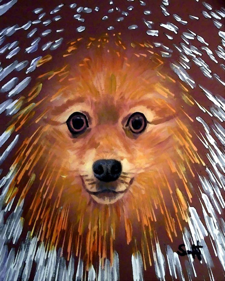 1000+ images about my dog Porkchop on Pinterest.