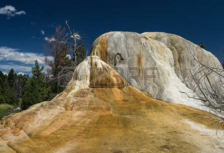 Orange Spring Images & Stock Pictures. 274,054 Royalty Free Orange.