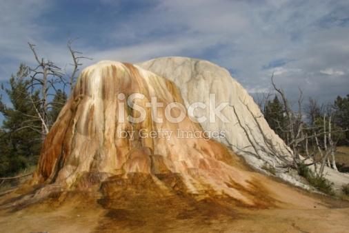 Orange Spring Mound Images.