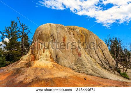 """orange Spring Mound"""" Stock fotos, billeder til fri afbenyttelse og."""