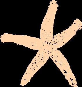 Pale Orange Starfish Clip Art at Clker.com.