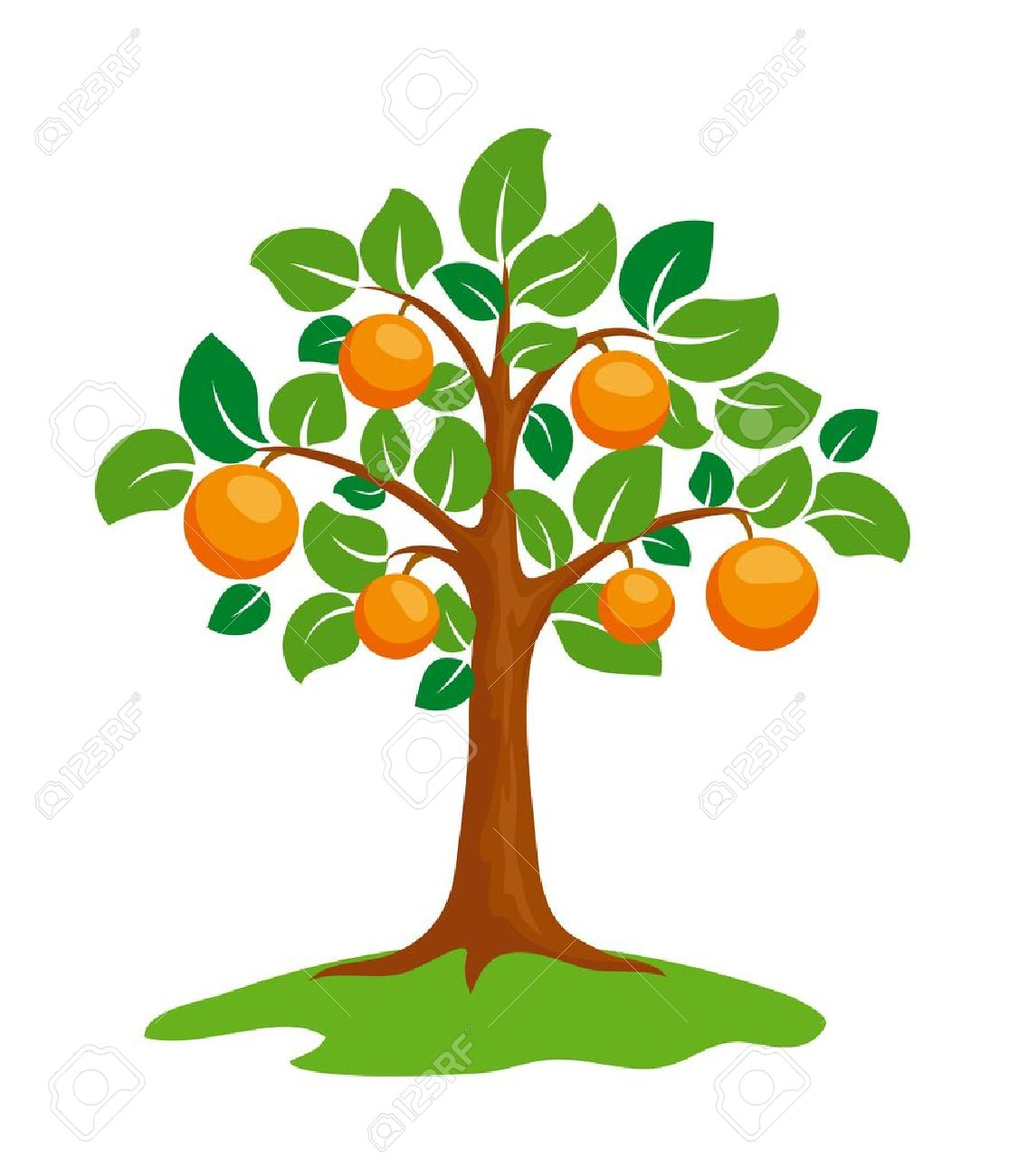 Orange tree clipart 1 » Clipart Station.