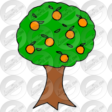 Orange Tree Picture for Classroom / Therapy Use.