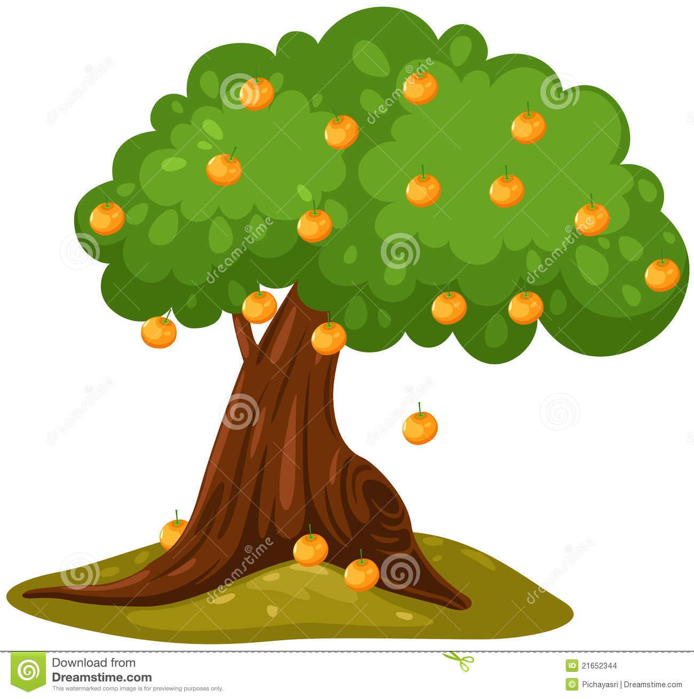 Bush orange tree clipart.