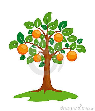 Clipart orange tree.