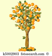 Orange tree Stock Illustration Images. 8,637 orange tree.