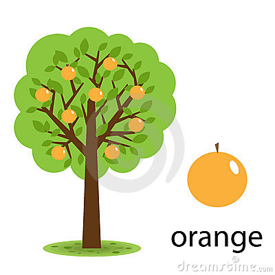 Orange trees clipart - Clipground