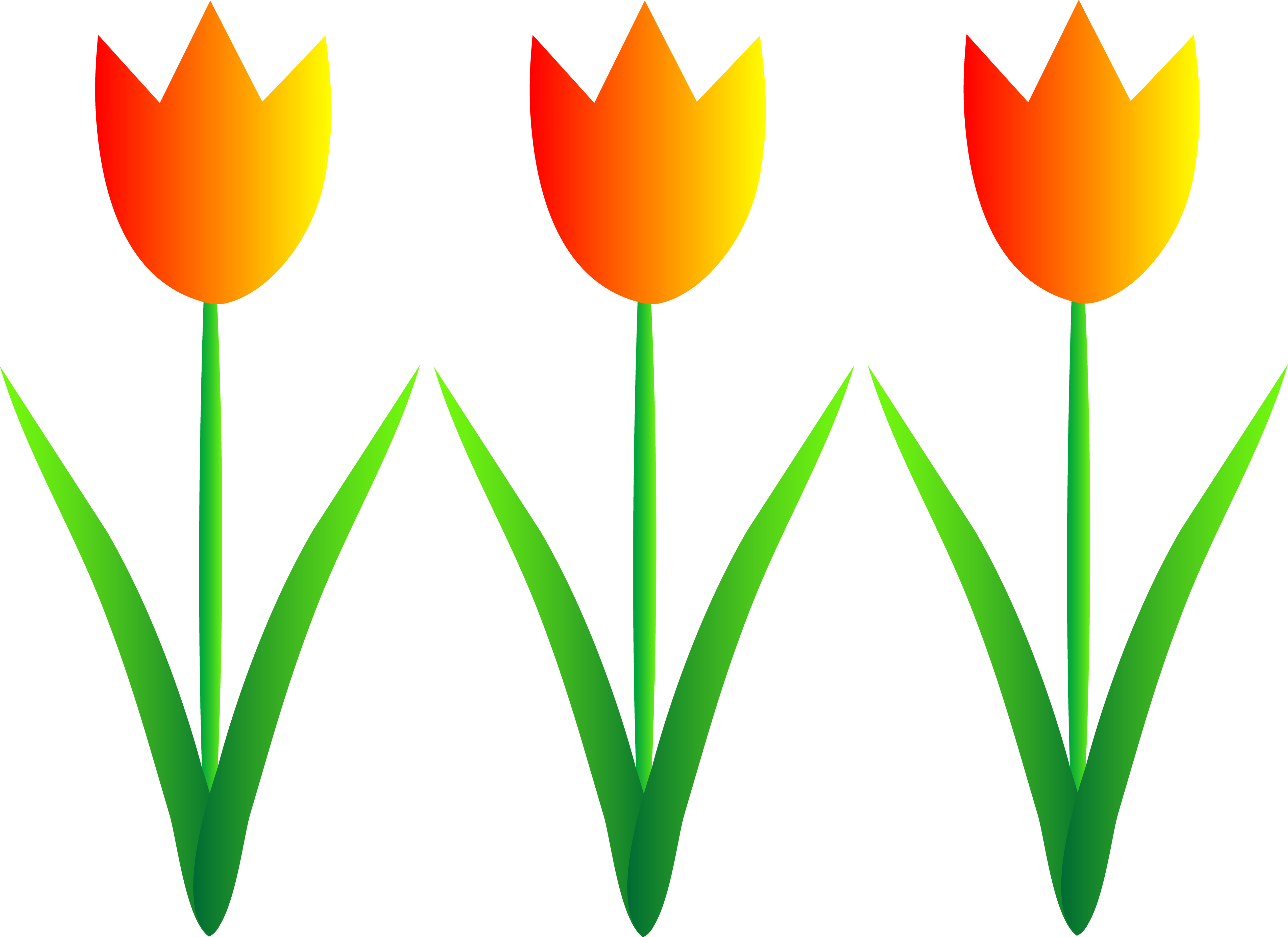 Orange tulips clipart - Clipground