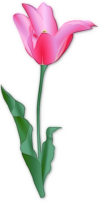 Free Clip Art Flowers Tulips.
