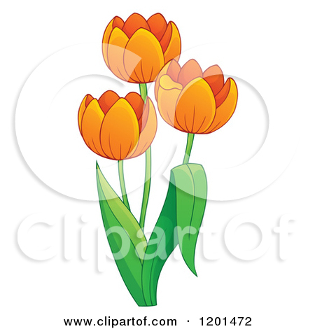 Cartoon of a Tulip Plant with Orange Flowers.