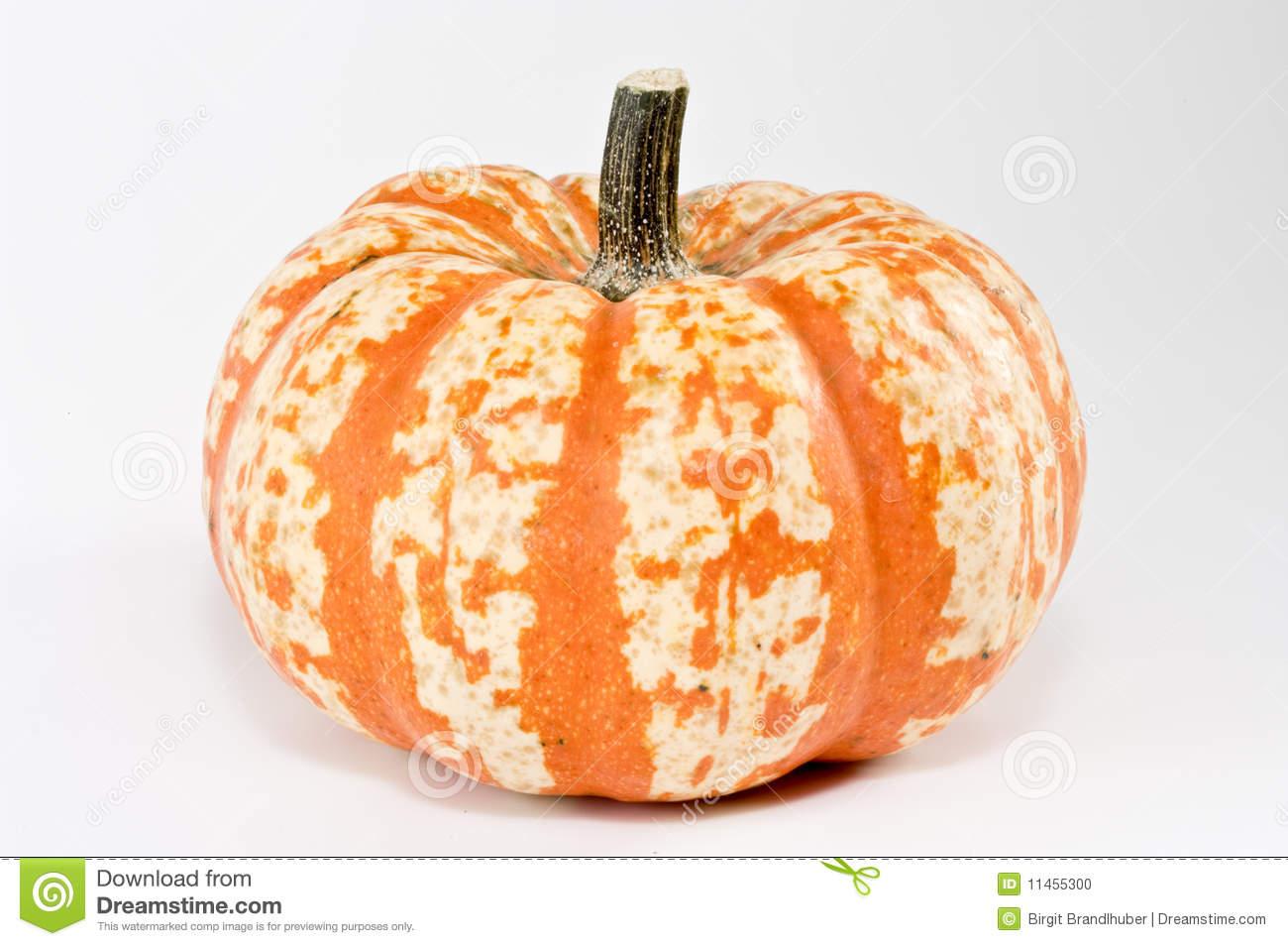 Striped Pumpkin Stock Photo.