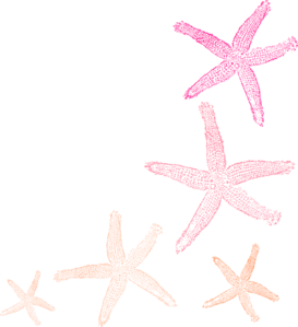 Starfish Orange Pink Clip Art at Clker.com.