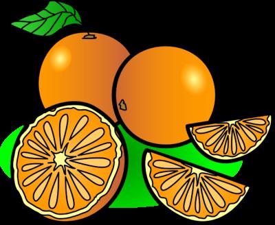 Image oranges food clip art.