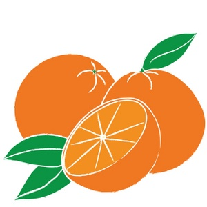 Oranges free orange clipart fruit clip art.