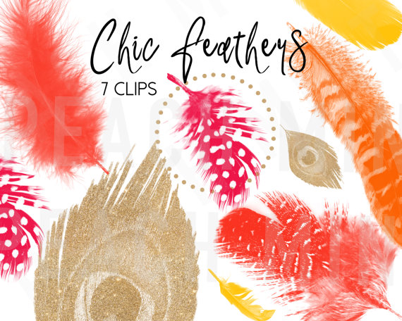 Chic Feather Clip Arts.