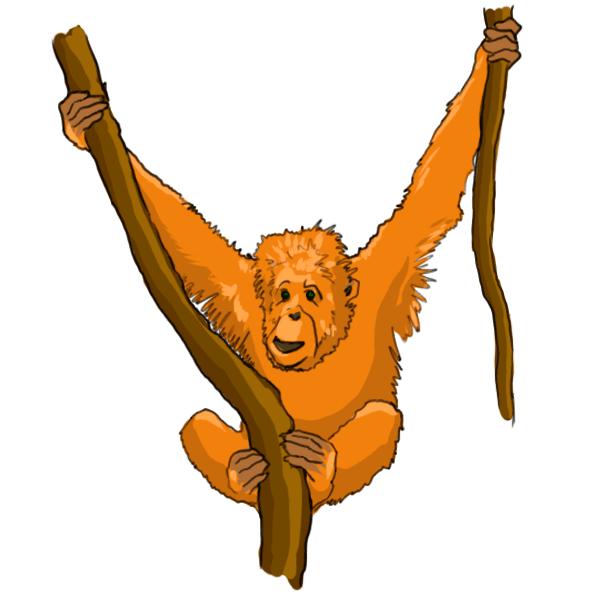 Cartoon Orangutan.