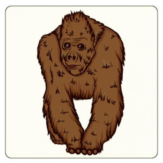 Orangutan Clip Art.