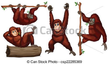 Orangutans Illustrations and Stock Art. 903 Orangutans.