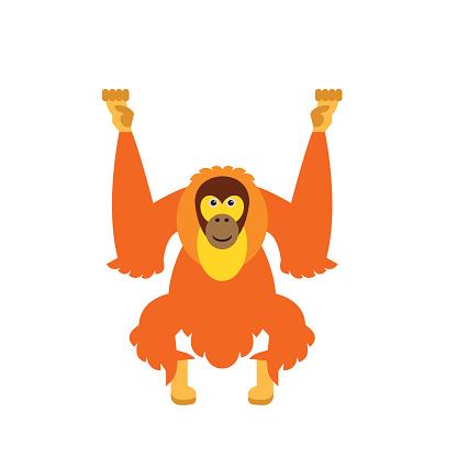 Orangutan Clip Art, Vector Images & Illustrations.