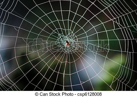 Orb web Stock Photo Images. 5,364 Orb web royalty free pictures.