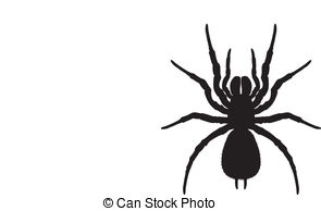 Orb web spider Illustrations and Stock Art. 11 Orb web spider.