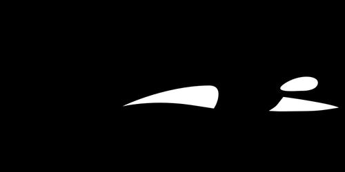 Orca silhouette.