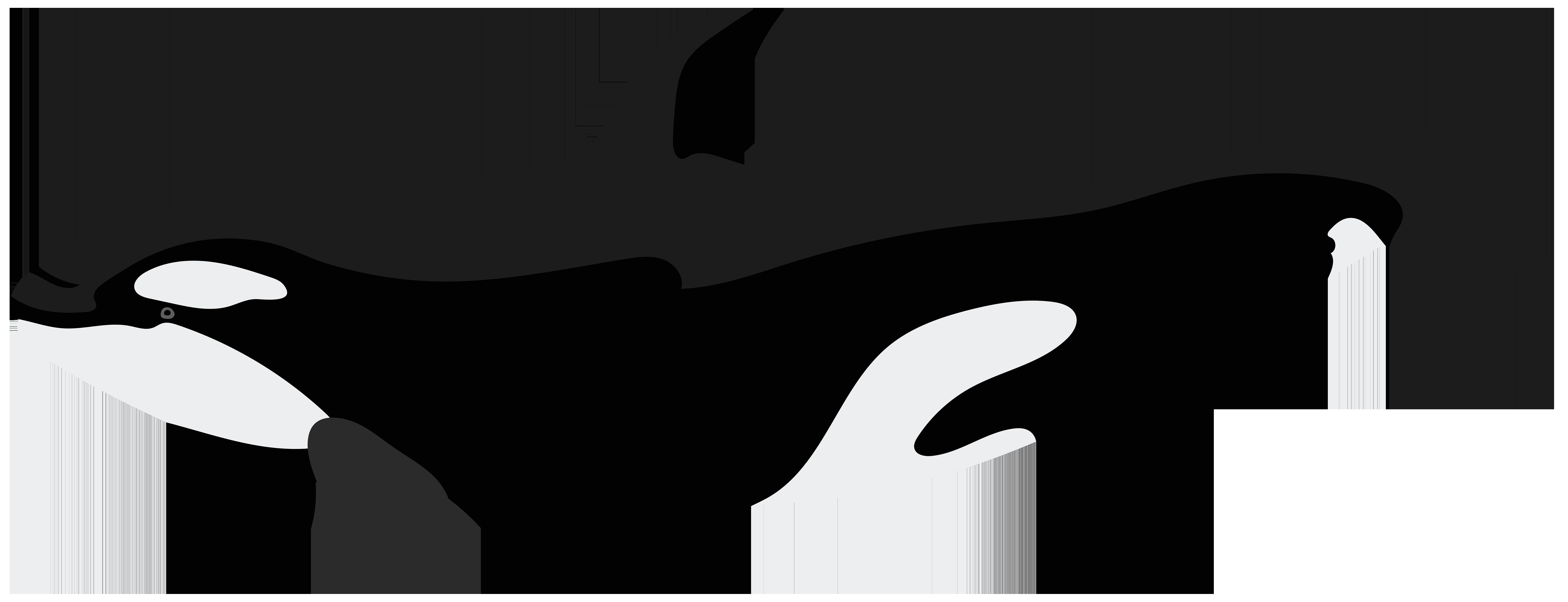 Orca PNG Clip Art Image.
