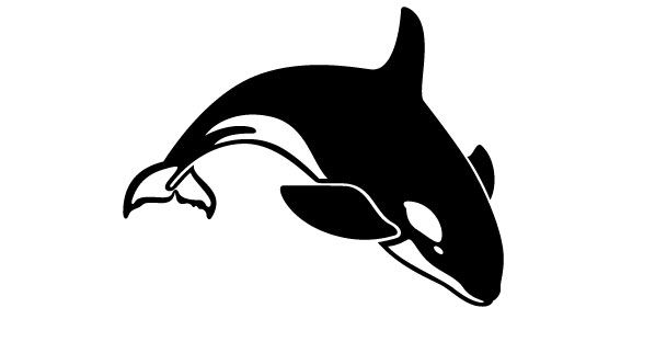 Pin on Orca.