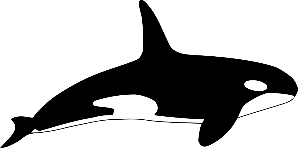 Orca Svg Png Icon Free Download (#438503).
