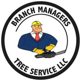 Branch Managers Tree Services.