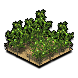 Orchard png 4 » PNG Image.