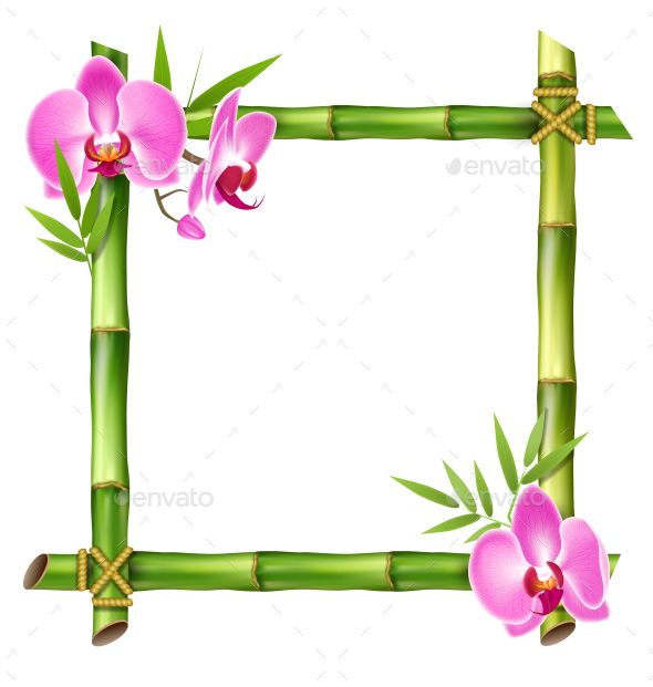 Green Bamboo Frame with Pink Orchid Flowers.