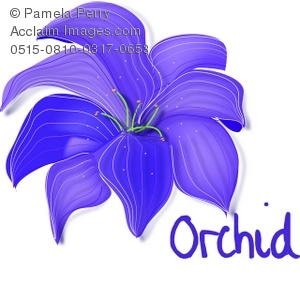 Clip Art Illustration of a Purple Orchid.