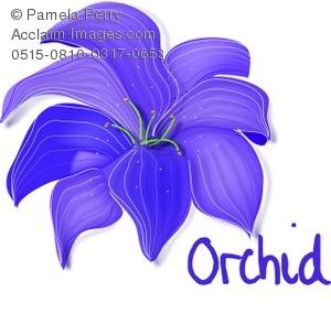 Clip Art Illustration of a Purple Orchid.