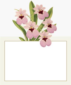 Caspari Orchid Show Floral Designer Print Die.