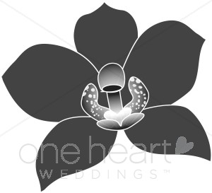 Wedding Orchid Clipart, Wedding Orchid Graphics, Wedding Orchid.