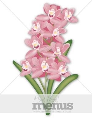Orchids Clip Art and Menu Graphics.