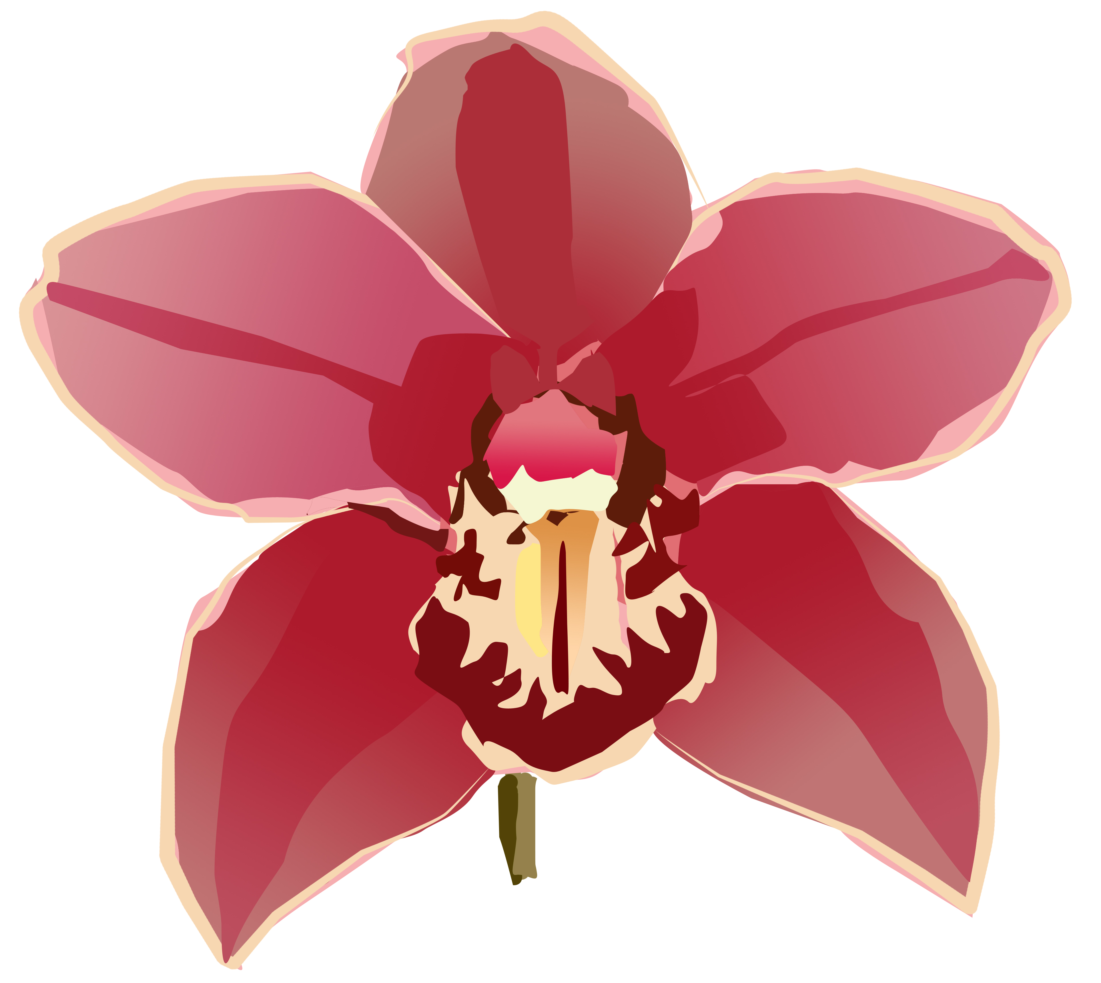 Orchid clip art free.