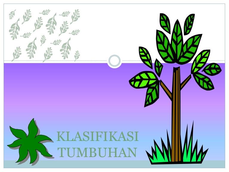 Klasifikasi Tumbuhan.