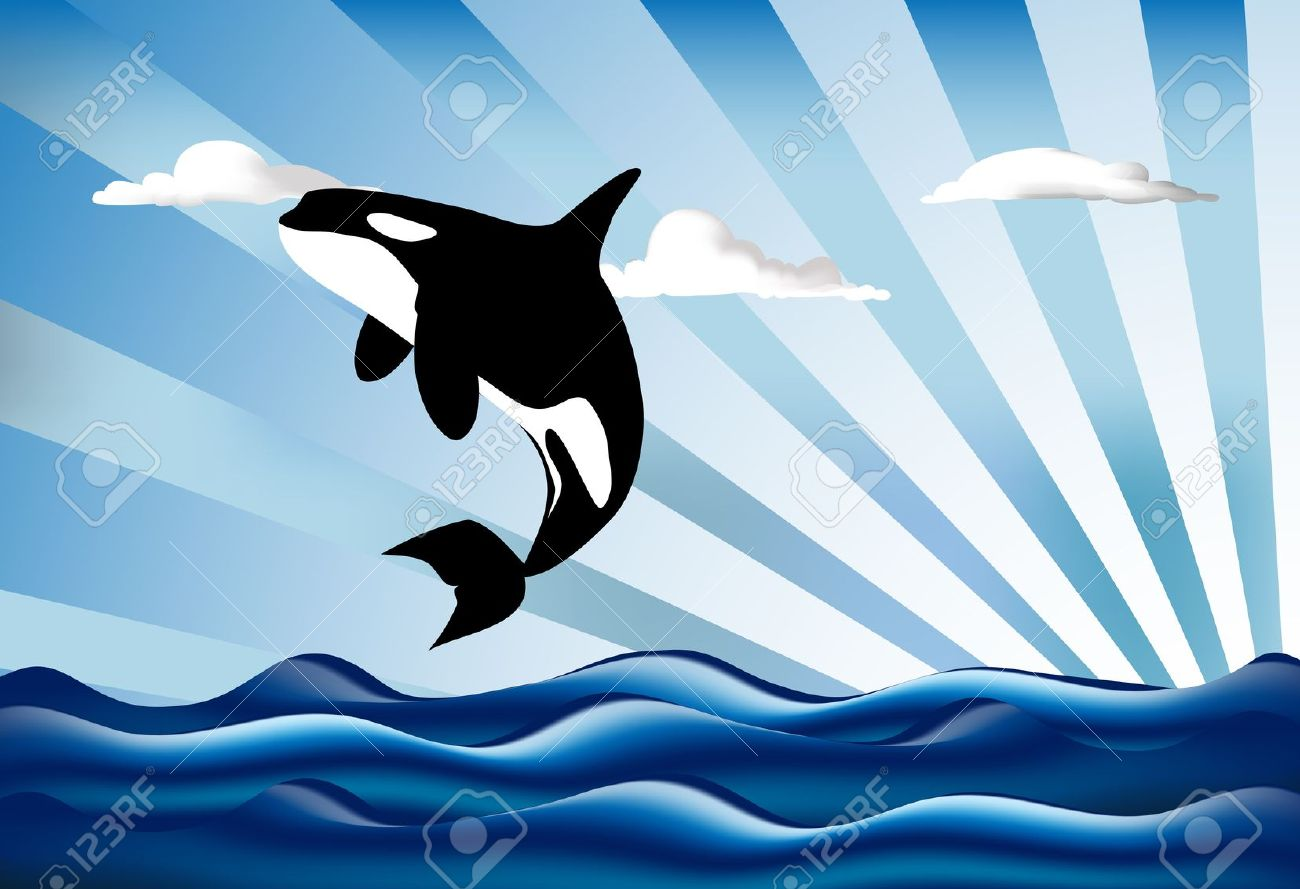 Orcinus Orca Killer Whale Jumping High Royalty Free Cliparts.