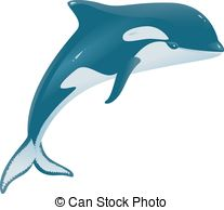 Orcinus orca Clipart and Stock Illustrations. 82 Orcinus orca.