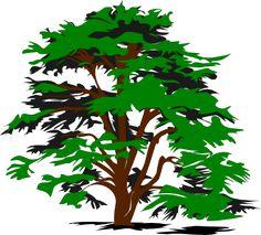 Oak Tree Clip Art.