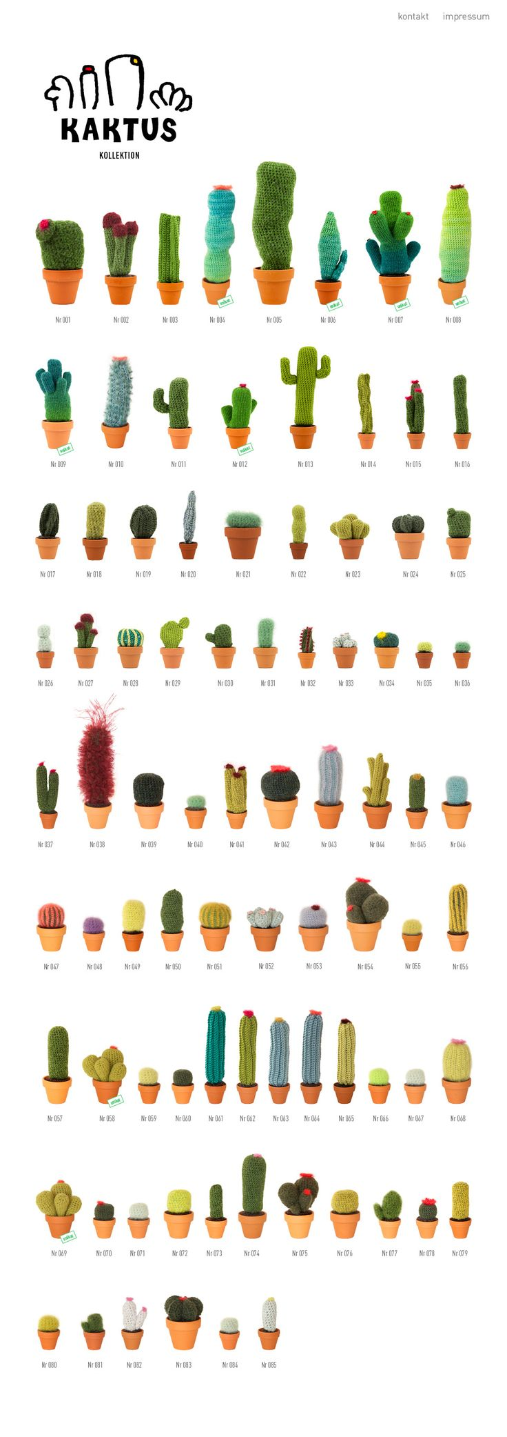 1000+ images about cacti on Pinterest.