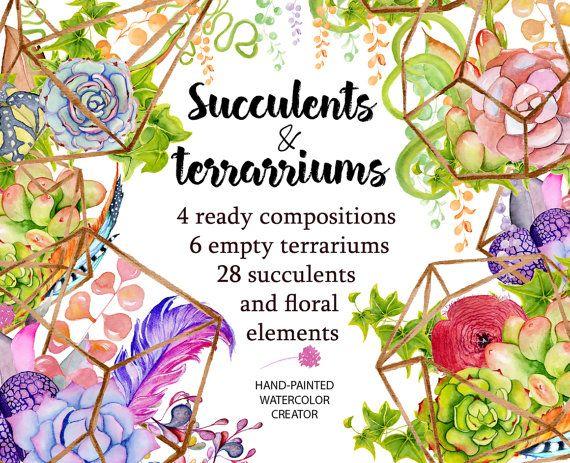 1000+ ideas about Cactus Terrarium on Pinterest.